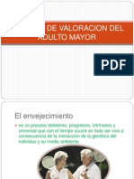 Escalas de Valoracion Del Adulto Mayor Ppt[1]