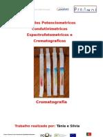 cromatografia stcf