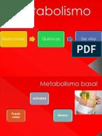 Metabolismo TAREA 1