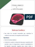 sistema limbico e hipotalamo.pptx