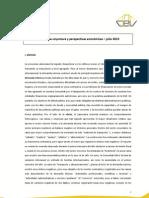 Cev Informe de Coyuntura Julio 2013