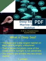 Deep sea as a marine living habitat