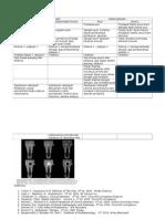 Periodontitis Apikalis vs Abses Periapikal