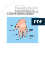 projekcija dlan tijelo