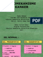 1-PATOMEKANISME KANKER