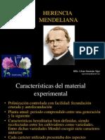 Herencia Mendeliana , Diapos !!