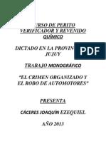 Tesis Bandas Organizadas - Robo de Automotores.