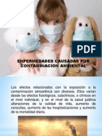 Enfermedades Causadas Por La Contaminacion Ambiental