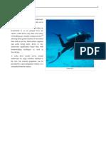 Scuba Diving Wki