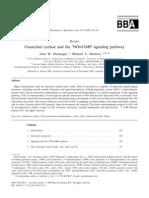 Guanylate Cyclase and the cNO-cGMP Signaling Pathway