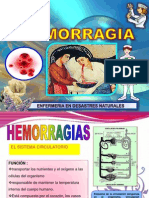 Diapositiva de Hemorragia Final