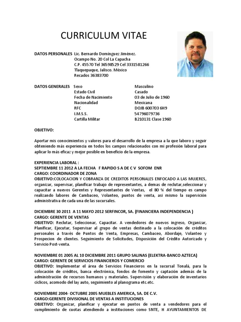 Hermosa El Jefe De Compras Curriculum Vitae Ideas - Ejemplo De ...