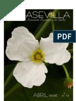 Boletín Asociación Acuariófila Sevillana - Acuasevilla No 13