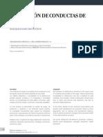 conductas de riesgo.pdf