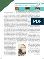 Krishnamurti Foundation Trust Newsletter _spring2006