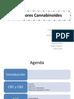 seminario_cannabinoides