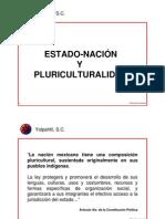 Estado-Nacion y Pluriculturalidad
