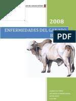 23408536 Enfermedades Del Ganado Bovino