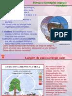 Biomas Formacoes Dos Vegetais