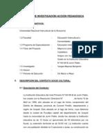 PROYECTO DE INVESTIGACIÓN ACCIÓN PEDAGÓGICA