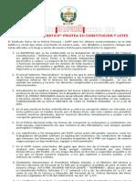 Pronunciamiento SUPP 2013 Copia