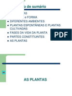 As Plantas Som