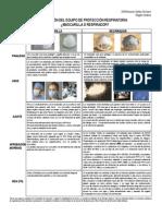 Diferencia Entre Respirador y Mascarilla (Jul.2013)