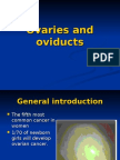 The Ovaries and Oviducts