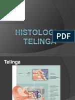 Histologi Telinga (Uploaded)
