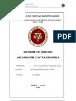 CARATULA erisipelaPORCINO[1]