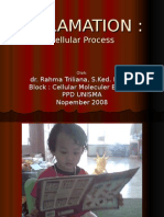 INFLAMATION_biomolsel_2008
