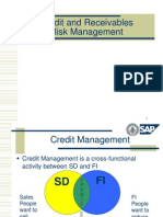 Credit & Receivables Risk Mgmt