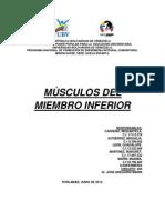 MÙSCULO miembro inferior.docx