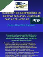 01 Evaluación sustentabilidad; MESMIS