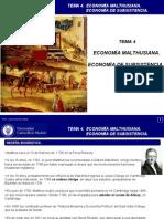 Clase Practica Tema 4 Economia Malthusiana