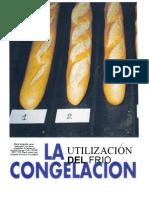 LA UTILIZACIÓN DE LA CONGELACIÓN.doc