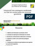8. Integração de pastagens medicinais na Rede de conservação de RGV_Noémia Farinha-Orlanda Póvoa