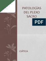 PATOLOGÍAS DEL PLEXO SACRO
