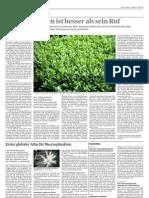 Der Buchsbaum - Tages Anzeiger_130719
