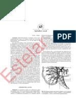 cirugía de michans - 5ta ed - 2002 - optimizado(819-829)_1