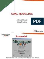Coal Modelling