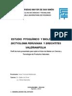 Perfil de Tesis Final.docx