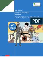 Recurso Cuaderno de Trabajo 28062013045745