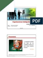 Trabajo 05 - 2013-06-15 Organización Inteligente