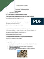 Apuntes de La Ultima Clase de Geologia (1)