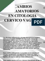 Cambios Inflamatorios en Citologia Cervico Vaginal