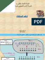 تركيب-البروتينات