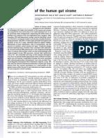 Rapid evolution of the human gut virome