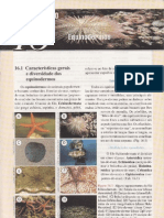 Cap.16 Equinodermos