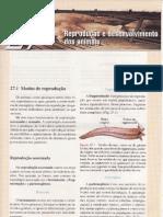 CAP.27-REPRODUÇÃO E DESENVOLVIMENTO DOS ANIMAIS